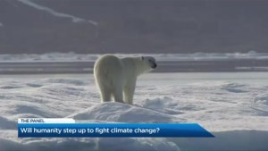 Will humanity step up to fight climate change?