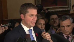 Scheer quashes any Ford rivalry, says two agree on carbon tax calling it 'cash grab'