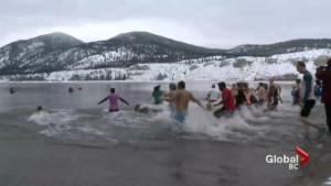 Annual Polar Bear Swim attracts thousands