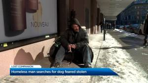 Homeless plan pleads to get his pet back