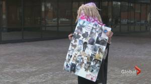 Accused Milk River animal abuser sent for psychiatric assessment