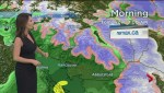 BC Evening Weather Forecast: Nov 8