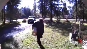 Stolen package returned after camera catches Langley suspect in action