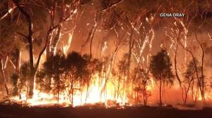 Video captures Australia firefighters trying to control bushfires