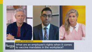 Clearing the confusion over vaccines mandates in the workplace (05:47)