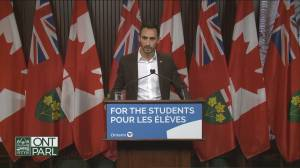 Stephen Lecce says math test scores for Grade 6 students released by EQAO are staggering