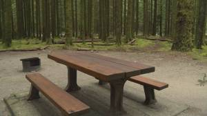 B.C. campground reservation site overwhelmed by demand
