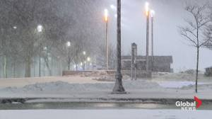 Ashley Field is live on Gottingen Street with the latest storm details