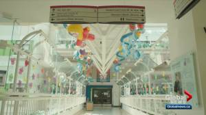 Alberta government exploring a stand-alone Stollery Children's Hospital in Edmonton (01:26)