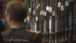 Nova Scotia mass murder reignites feds gun control talk