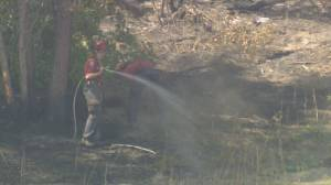 Large-scale planned ignition on White Rock Lake fire postponed (02:02)