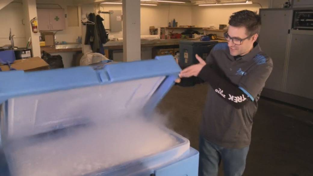 Click to play video 'B.C. company gets dry ice contract to help move vaccine'