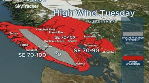 Wind warning issued for B.C.'s south coast as Pacific frontal system advances (03:21)