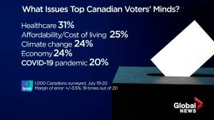 What issues top Canadian voters' minds? (04:11)