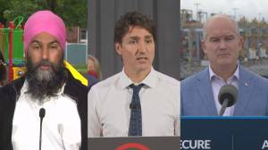 What to expect at Federal Leaders face-off in French language debate (06:20)