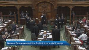 Queen's Park resumes sitting for the first time in 8 weeks