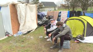 Homeless camp grows in Kingston