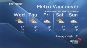 B.C. evening weather forecast: Jan. 5 (01:56)