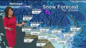 Snow possible across B.C.'s South Coast tonight (02:45)