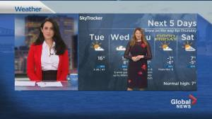 Global News Morning weather forecast: March 30, 2021 (01:59)