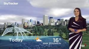 Edmonton early morning weather forecast: Tuesday, September 24, 2019 (00:54)