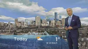 Edmonton early morning weather forecast: Monday, March 16, 2020
