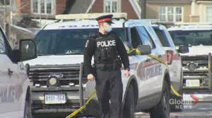 Wounded children in Mount Albert stabbing incident expected to live (01:53)