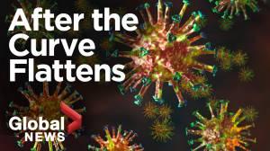 Coronavirus outbreak: What happens after we flatten the curve?