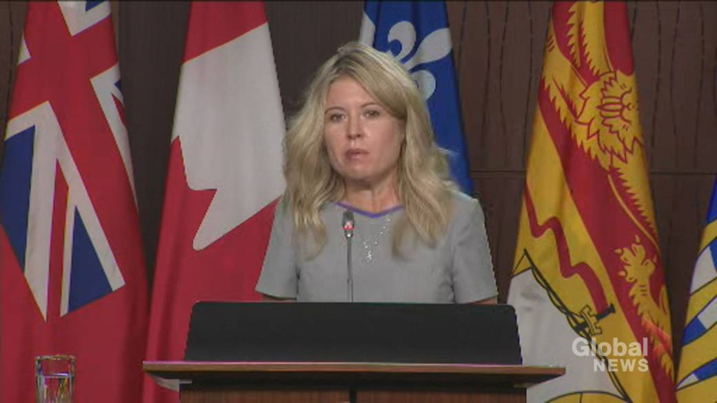 Click to play video 'Coronavirus: Michelle Rempel Garner calls for rapid testing at Canadian airports'