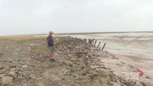 How climate change is threatening the Chignecto Isthmus (02:32)