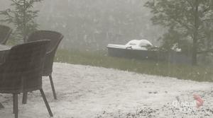 Heavy hail hits Bancroft (00:36)
