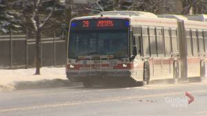 Bus-only lanes part of TTC's 5-year service plan