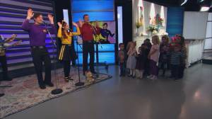 The Wiggles perform 'Hey Dum Diddly Dum'
