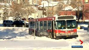Approximately 150 Calgary Transit buses stuck after winter storm (02:31)