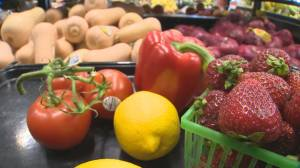 Toronto health board looks to tackle food insecurities (01:55)