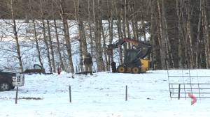 1 person dead after gas leak near Millarville