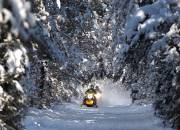 Play video: Snowmobile trails in Northumberland County Forest closed while County and snowmobile association negotiate land use deal