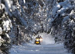 Snowmobile trails in Northumberland County Forest closed while County and snowmobile association negotiate land use deal (02:25)