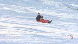 Quebec doctors warn of sledding dangers as injuries soar (02:05)