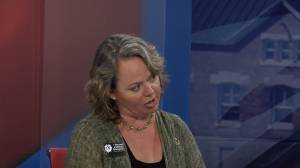 Federal Green Party candidate for Kingston and the Islands, Candice Christmas visits Global News Morning