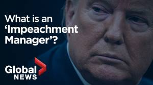 The role of an impeachment manager explained in a minute