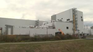 Canada Royal Milk holds job fair to hire 30 production technicians