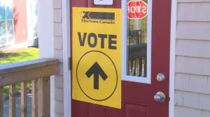 Federal Election 2019: Number of millennials eligible to vote grows in size, new report shows