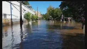 Ida's deadly damage in U.S. prompts climate crisis concerns (01:53)