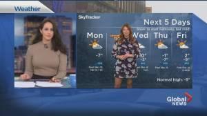 Global News Morning weather forecast: February 1, 2021 (01:25)