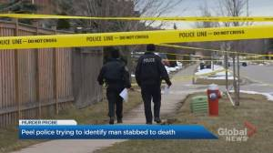 Young man in Mississauga found dead in quiet neighbourhood