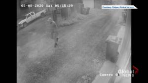 Calgary police release surveillance video connected to arson investigation