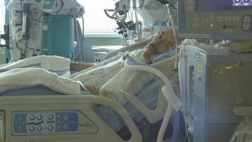 More trouble for Surrey family already battling COVID-19   Watch News Videos Online