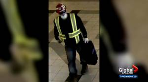Calgary police investigating whether mall robberies are linked