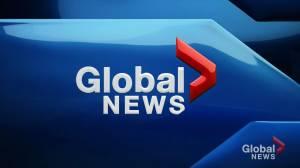 Global News at 5: September 13 Top Stories